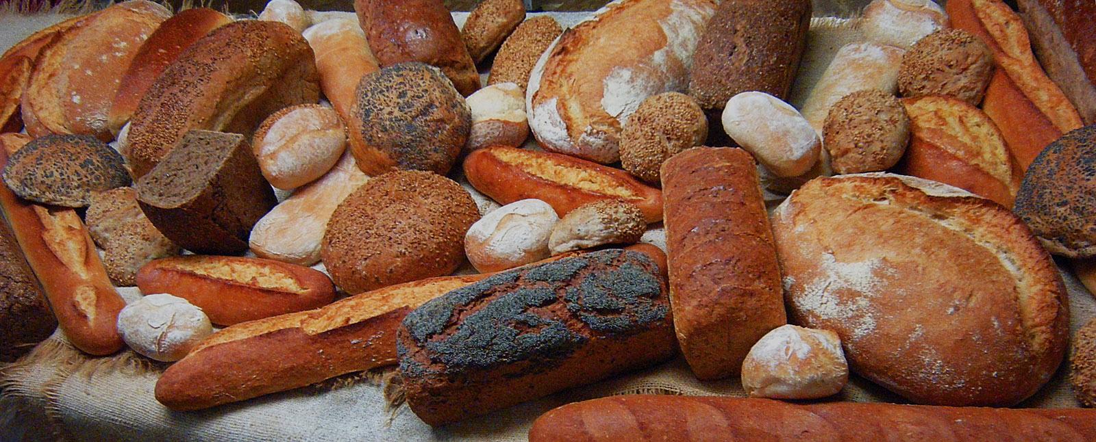 Pa, pan, harina ecológica, farines ecològiques, espelta, kamut, fajol, sarracenoa